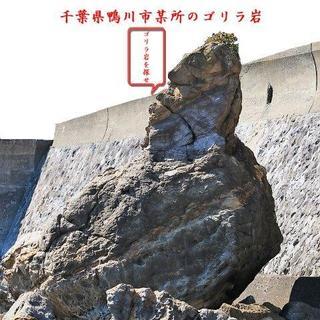 ゴリラ岩.jpg