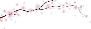 flower0176.jpg